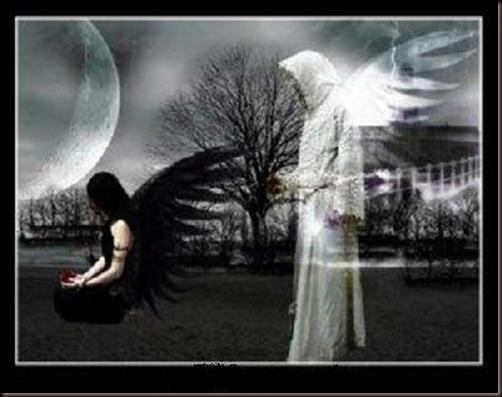 angel de la muerte y vida